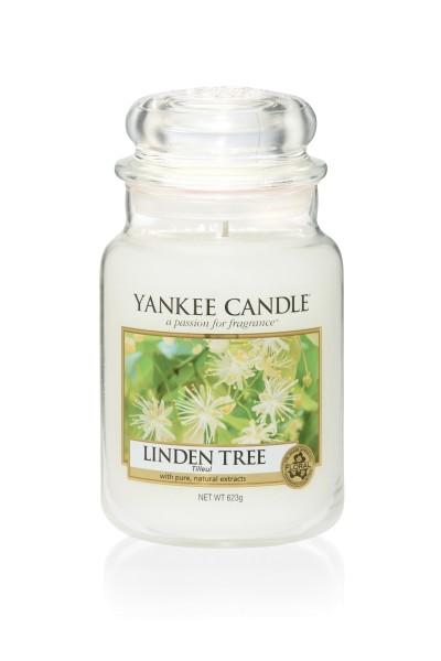 Yankee Candle Housewarmer LINDEN TREE 623 g